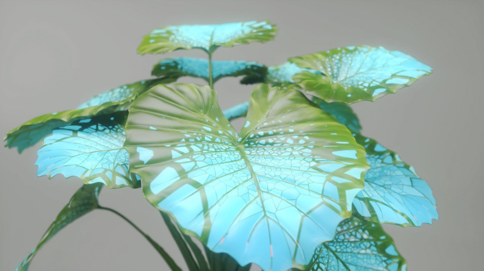 Screens of the future – Plant